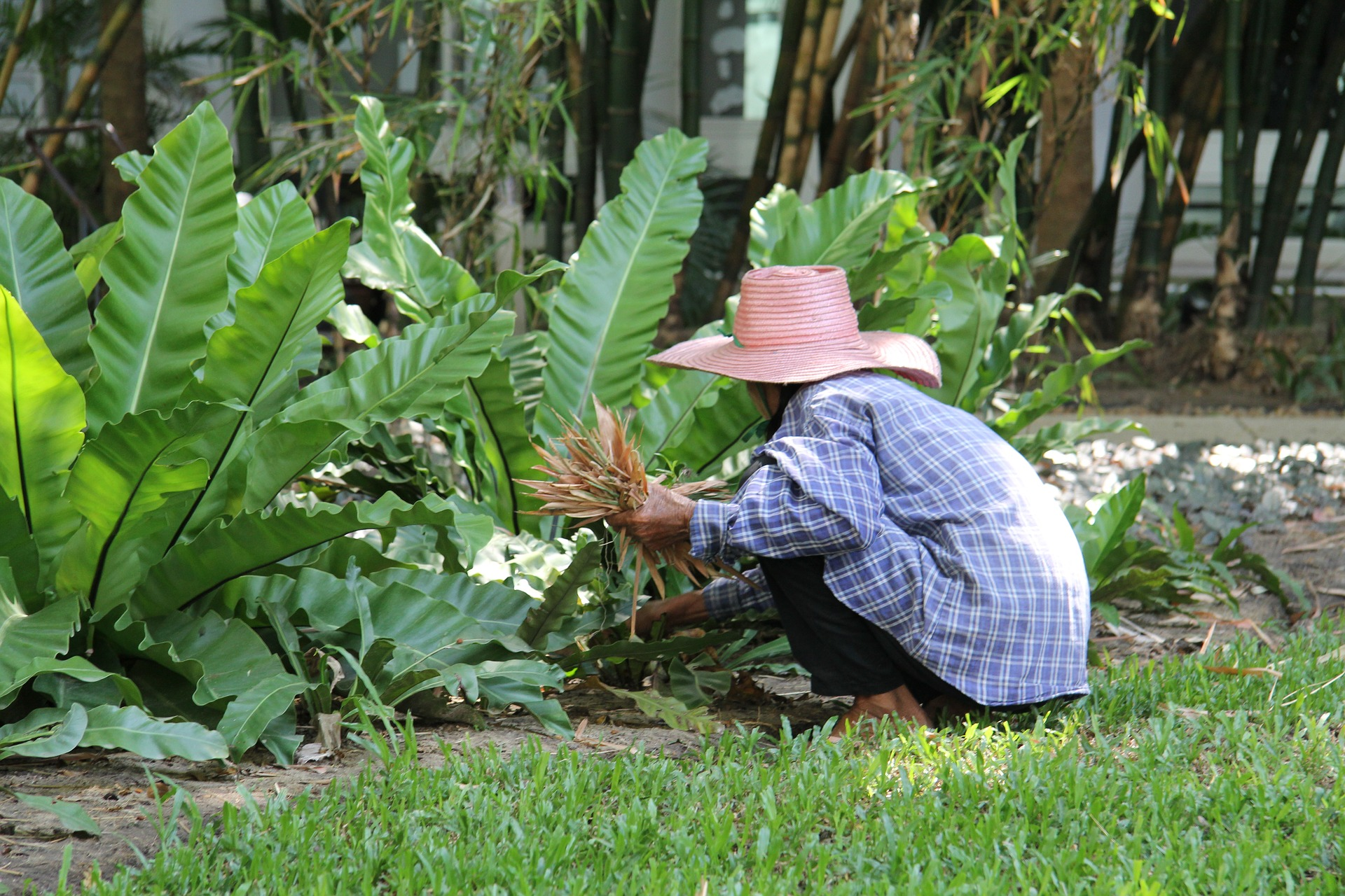 Hard working gardener